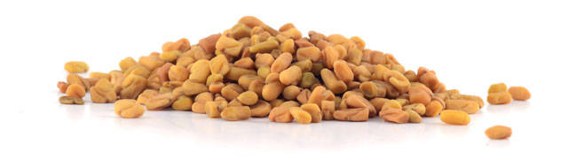 Premium Test Fenugreek